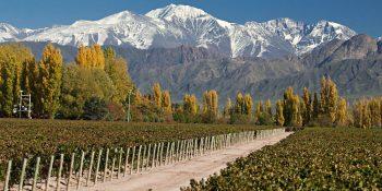 Mendoza estuvo entre los destinos más elegidos del fin de semana largo
