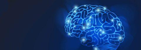 Rehabilitación Cerebral en Argentina